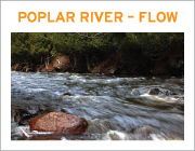 Poplar River FLow